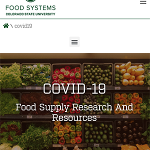 food systems website screenshot
