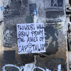 Flowers will grow from the ashes of capitalism